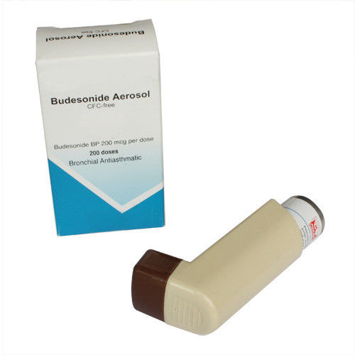 Budesonide Formoterol Inhaler CFC Free 200doses Aerosolized Medications