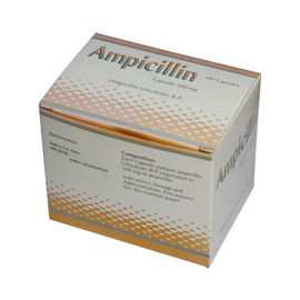 Kapsul Ampisilin Derivatif Sintetis 250 mg 500 mg Obat Antibiotik Oral